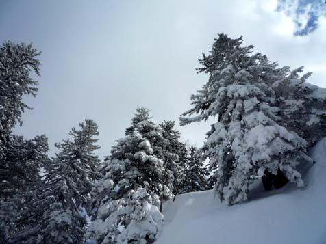 お山はまだまだ雪がいっぱい。_f0096216_19311142.jpg