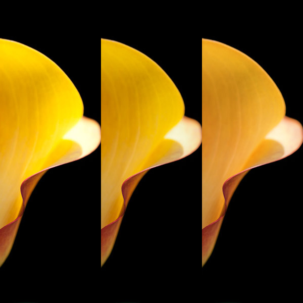 Lightroom(Camera Raw)の白飛び軽減動作の修正_f0077521_2245657.jpg