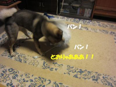 f0143123_19561365.jpg