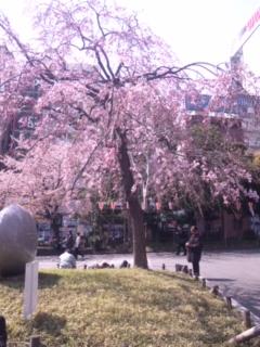 上野公園に行きましたぁ_e0114246_7573434.jpg