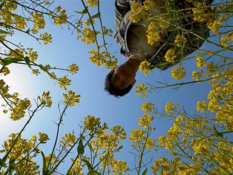 フォトギャラリー♯17 『春は南から』 【2】_e0071652_10379100.jpg