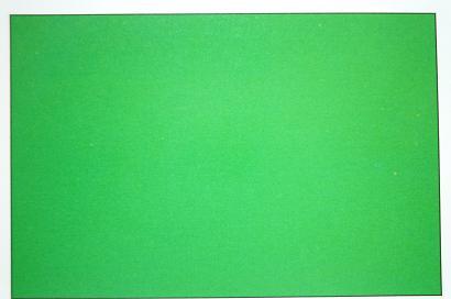 green_d0087595_16475132.jpg