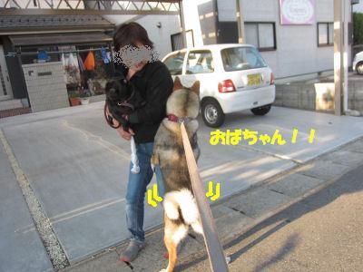 f0143123_20114084.jpg