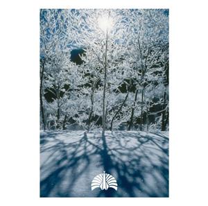 東京事変ニュー・シングルの発売が5/11に決定_e0197970_10485750.jpg