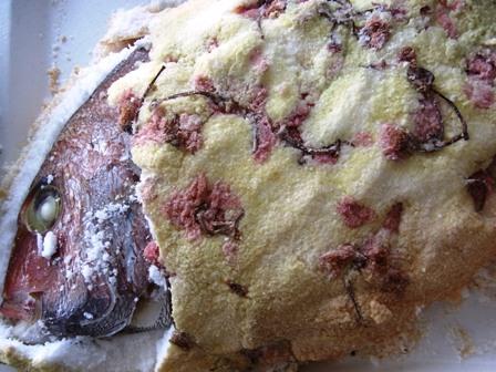 桜の花香る、鯛の塩焼き_a0138976_17114340.jpg