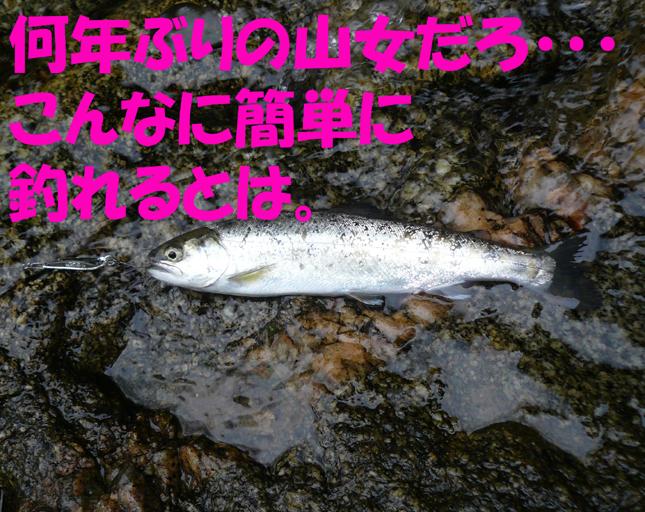 f0183484_2364583.jpg
