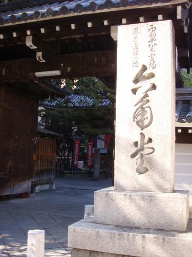 桜(その③)_f0201286_16501068.jpg