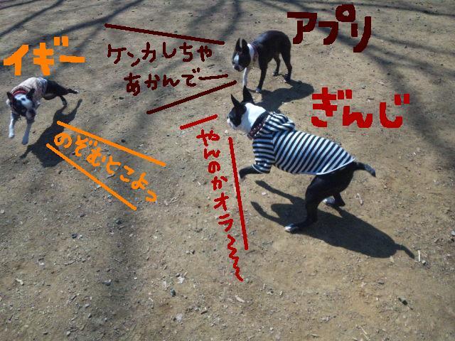 オワリはじまり★地震の日のコト_d0187891_0553851.jpg