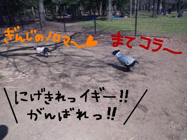 オワリはじまり★地震の日のコト_d0187891_0555853.jpg