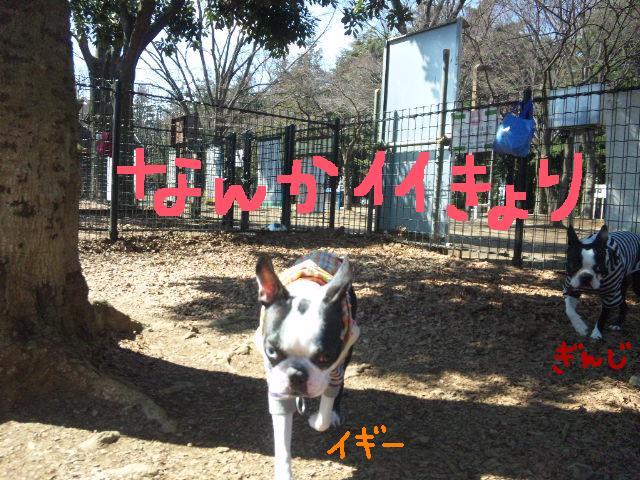 オワリはじまり★地震の日のコト_d0187891_0561622.jpg