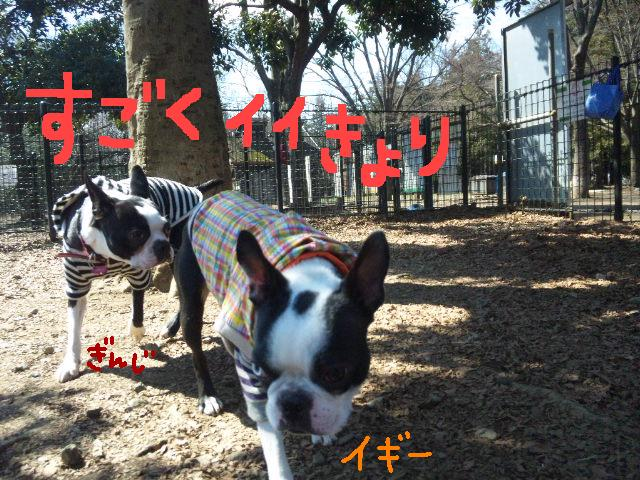 オワリはじまり★地震の日のコト_d0187891_0562599.jpg