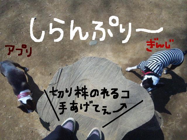 オワリはじまり★地震の日のコト_d0187891_0575744.jpg