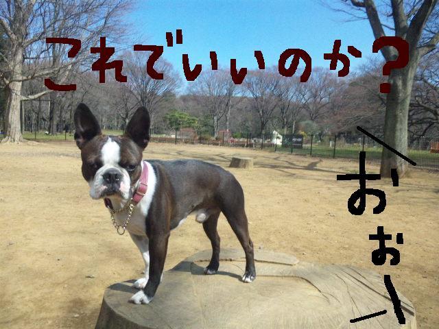 オワリはじまり★地震の日のコト_d0187891_0581286.jpg