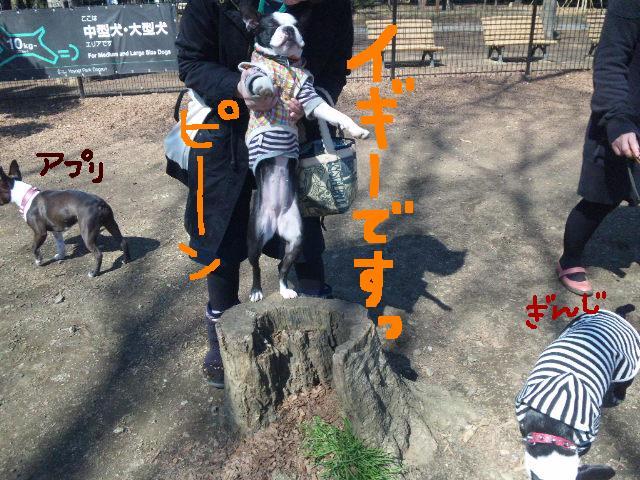 オワリはじまり★地震の日のコト_d0187891_0583271.jpg