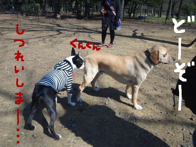 オワリはじまり★地震の日のコト_d0187891_0584254.jpg