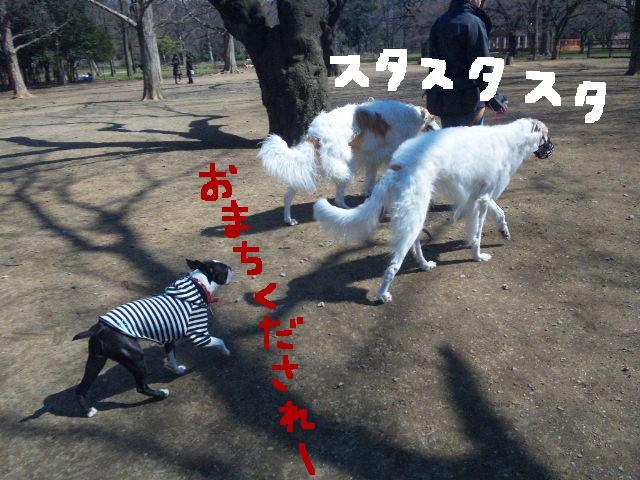 オワリはじまり★地震の日のコト_d0187891_0585246.jpg