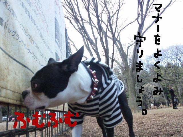 オワリはじまり★地震の日のコト_d0187891_0591554.jpg