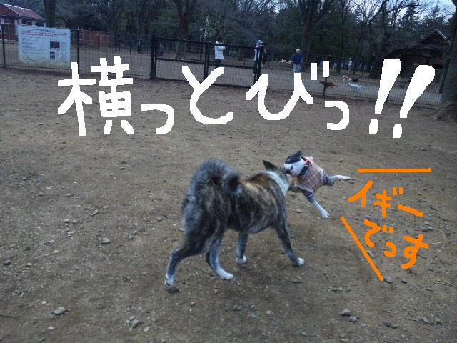 オワリはじまり★地震の日のコト_d0187891_0592571.jpg