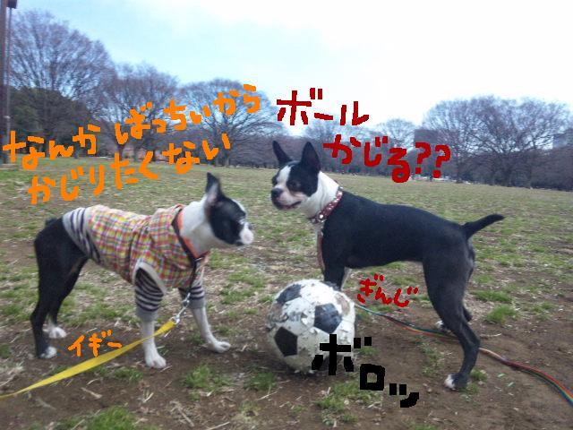 オワリはじまり★地震の日のコト_d0187891_059349.jpg