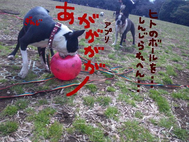オワリはじまり★地震の日のコト_d0187891_0594313.jpg