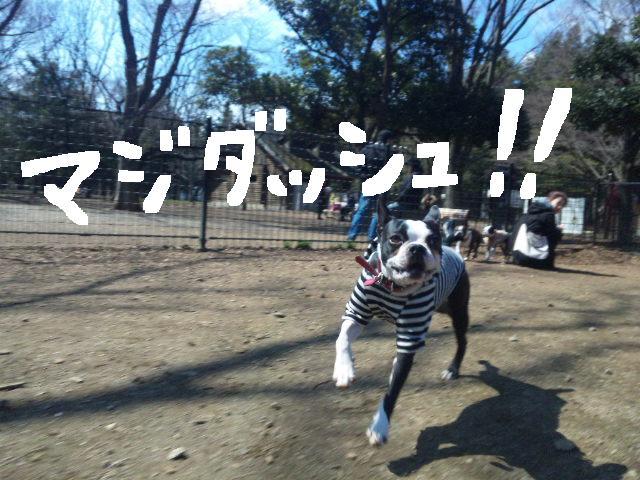 オワリはじまり★地震の日のコト_d0187891_059441.jpg