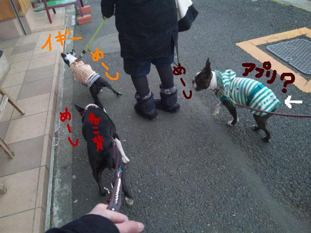 オワリはじまり★地震の日のコト_d0187891_0595335.jpg