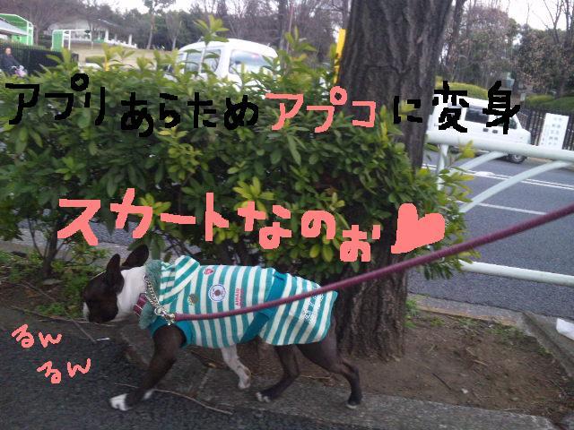 オワリはじまり★地震の日のコト_d0187891_10264.jpg