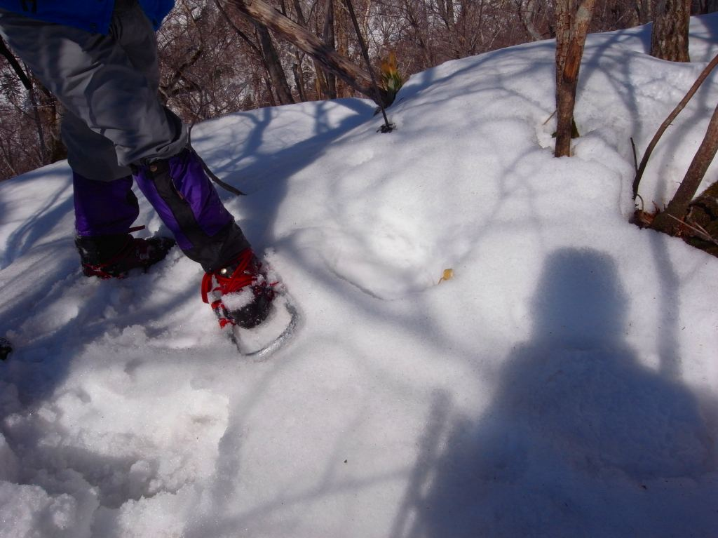 4月5日、丹鳴(になる)岳から稜線歩き-その1-_f0138096_1729071.jpg
