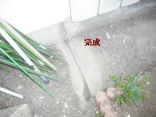 f0031037_20112816.jpg