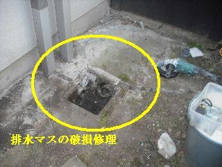 f0031037_20114152.jpg