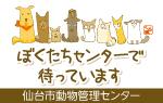 仙台市動物管理センター 保護猫・犬情報