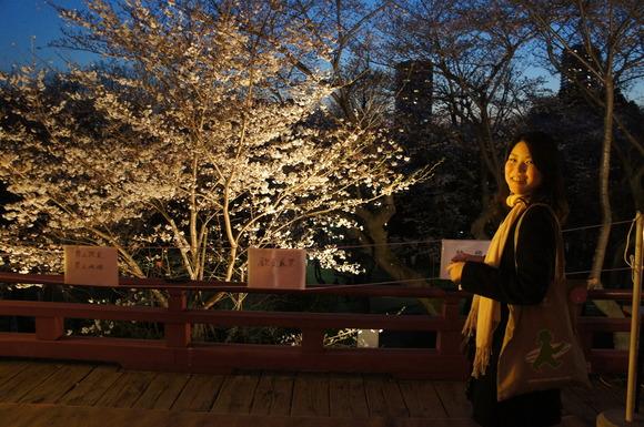 上野の山の見事な桜たち!_c0180686_0573886.jpg