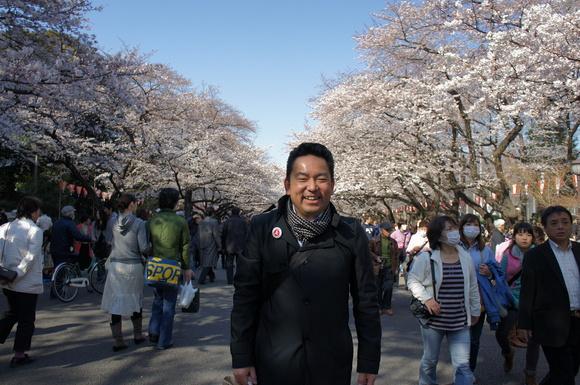 上野の山の見事な桜たち!_c0180686_118962.jpg