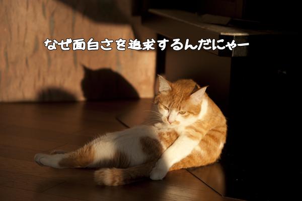 b0141397_1042486.jpg