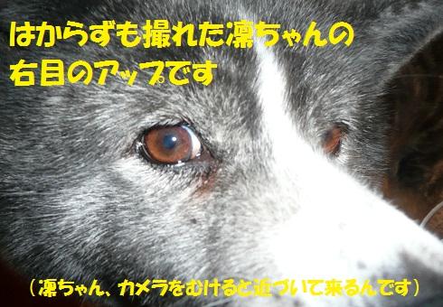 f0121712_1423373.jpg