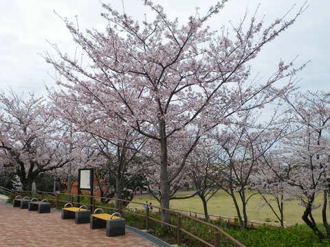 高塔山公園へGO!_e0198627_146242.jpg