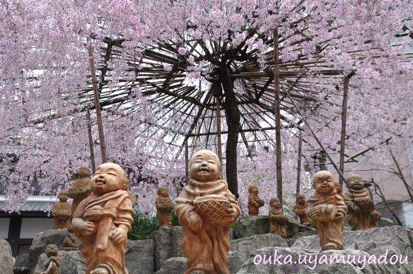春・京の桜・六角堂_a0157263_22442095.jpg