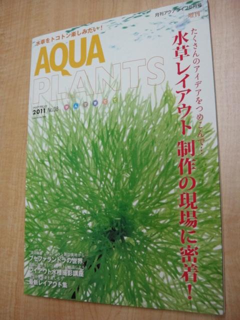 アクアプランツ 2011   No.08_e0181866_1551569.jpg