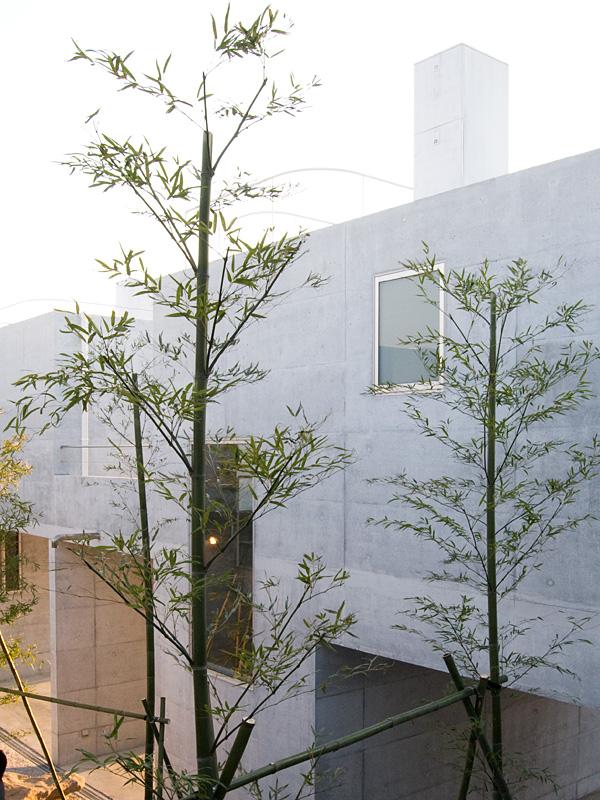生物建築舎さんの新築物件「quarry」内覧会(feat.乙庭 ^^;)_f0191870_1844345.jpg