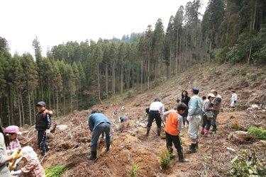 九州山口匠の会「匠の極!小国杉植林ツアー」_b0112371_1704323.jpg