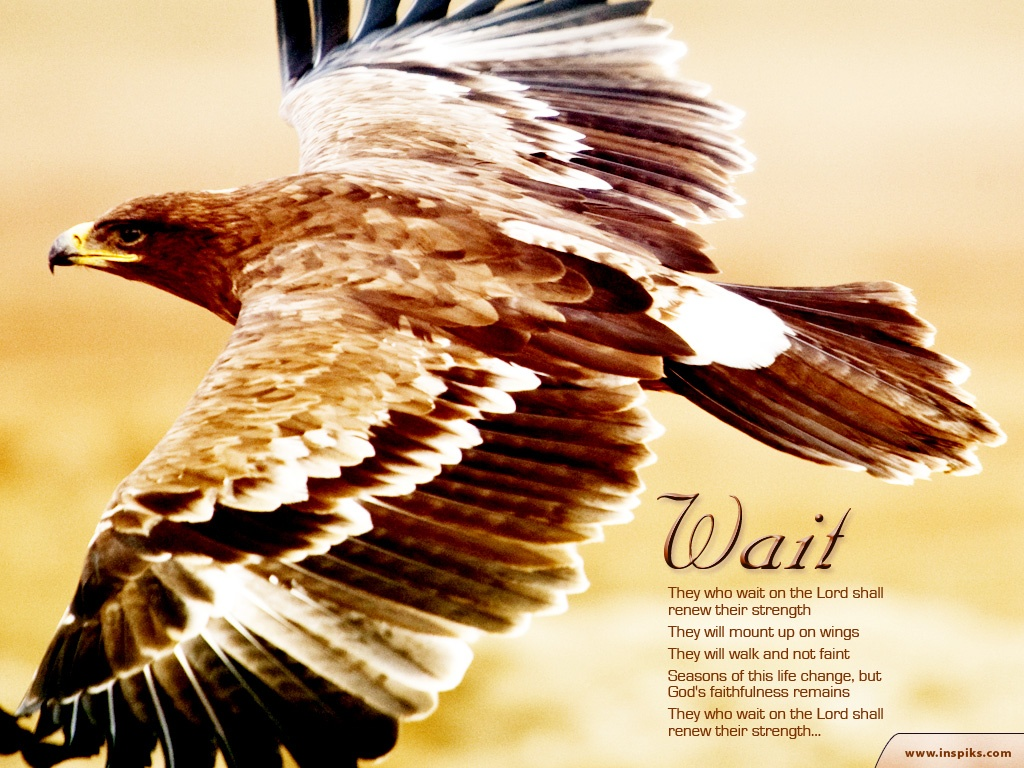 4月7日Ⅰ列王1‐3章『ソロモンの知恵』_d0155777_9571256.jpg