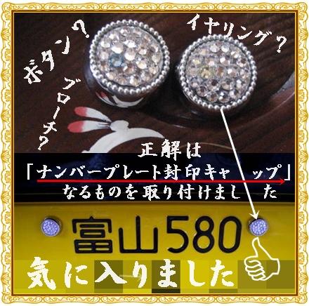 f0175279_7483753.jpg