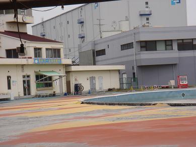 ★地震後の三番瀬とホンビノス★_e0147297_16134648.jpg