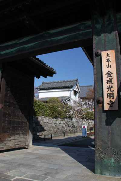 京の花だより 金戒光明寺_e0048413_2281938.jpg