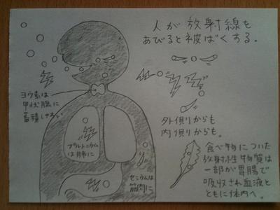 放射能とは? 図で解説してみます_e0229334_1541072.jpg