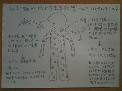 放射能とは? 図で解説してみます_e0229334_1542786.jpg