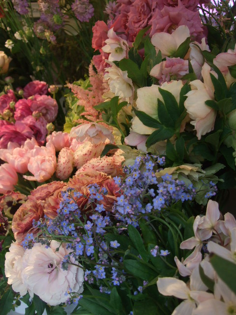 オークリーフ(桜色の花たち)_f0049672_18163579.jpg