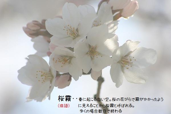 b0211674_15401386.jpg