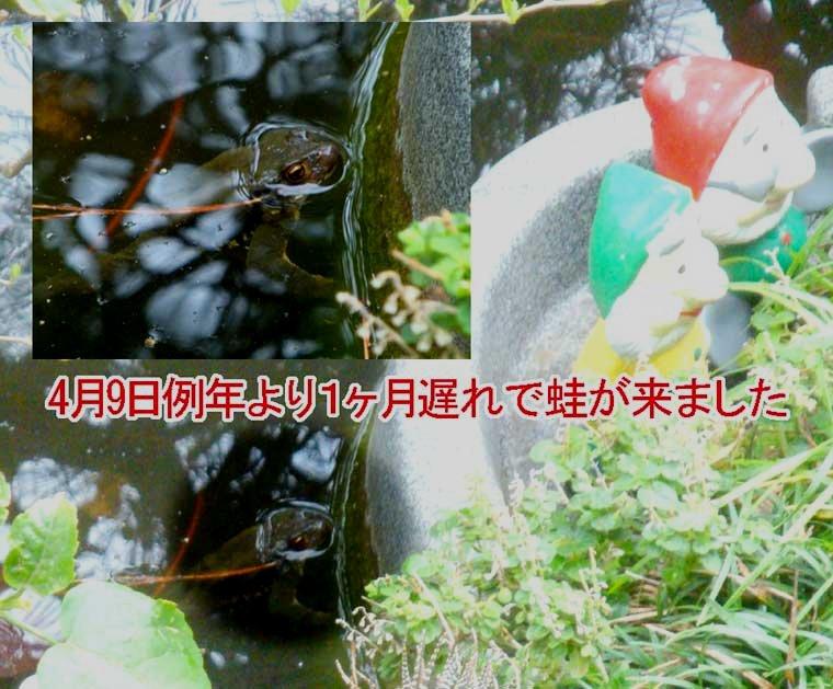 a0141004_14384933.jpg