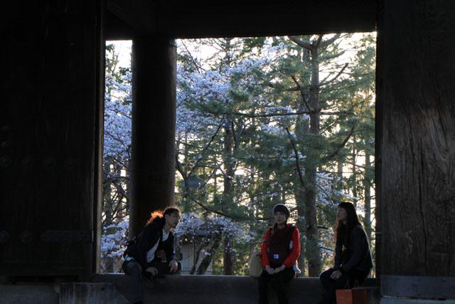 京の花だより 南禅寺_e0048413_9521453.jpg